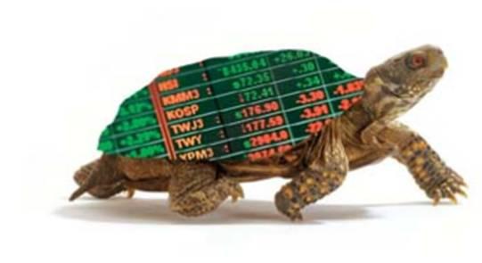 """turtle1 เปิดตำนาน วิธีการเล่นหุ้นแบบ """"เซียนเต่า"""" : The Turtle Trader !! (ตอนที่ 3)"""