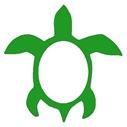 หุ้น turtle-02