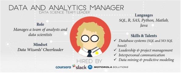 data-analytics-manager-infographic