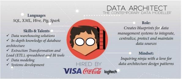 data-architect-infographic